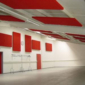 Die Akustikplatten ABSOPANEL eignen sich für die Wand- oder Deckenmontage und gewährleisten eine hervorragende Korrektur der Akustik in allen lauten Umgebungen.